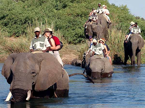 Замбия, Африка отдых